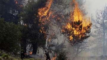 Драматична ситуация на остров Закинтос заради голям пожар