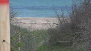 """Изграждат ограда на плажа """"Корал"""""""