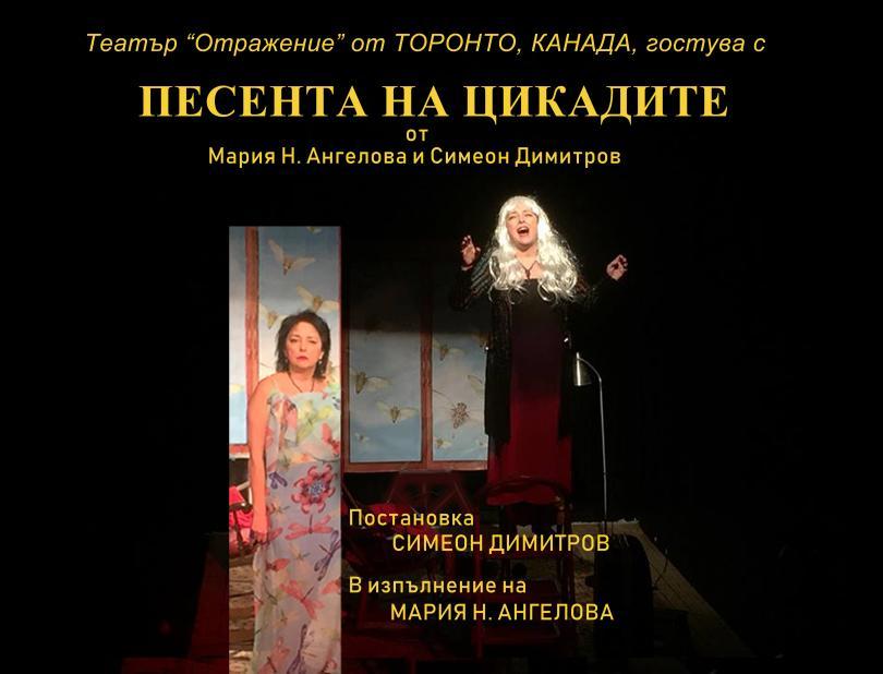 снимка 2 Отвъд границите: Мария Н. Ангелова и песента на цикадите