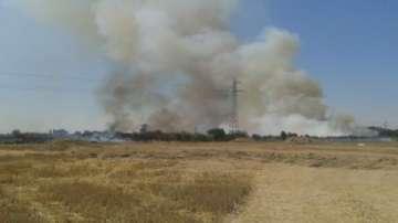Над 10 хиляди декара сухи треви горят край Пловдив