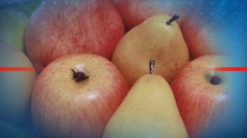 Фирми искат парите си за плодове и мляко в училищата