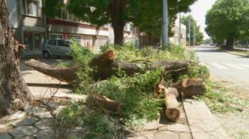 Буря с пороен дъжд и ураганен вятър в София, Перник и Пловдив