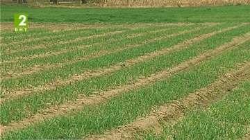 Земеделци против еднодневните трудови договори