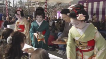 Започна японският фестивал на сливата