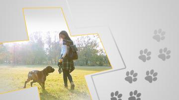 Четири истории за връзката между хора и животни