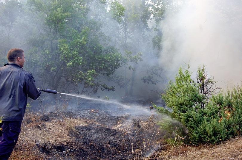 56 годишен тракторист свиленград предизвикал пожара лисово левка