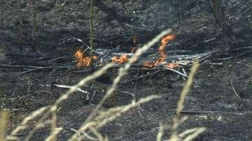 Пожар пламна между кварталите Левски Г и Враждебна в столицата