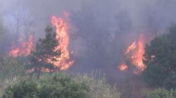 Голям пожар гори между хасковските селa Остър камък, Иваново и Елена