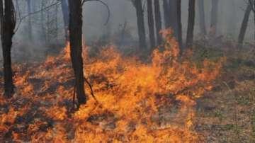 Голям пожар гори във вилна зона Воден камък в Хисарско