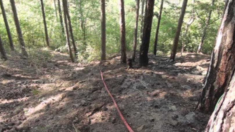 Пожарът край Баня е овладян, силен вятър затрудни действията на огнеборците