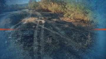 Близо 100 души се борят с огнената стихия край Брягово, Родопи и Любеново
