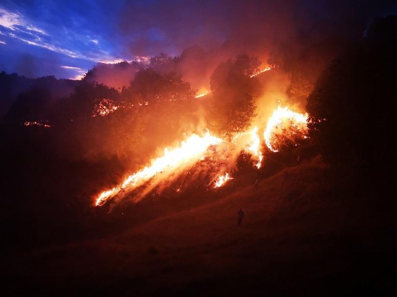 100 горски пожарникари гасиха пожар петрич