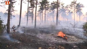 Пожар гори във варненското село Каменар