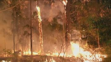 Две жертви и седем души в неизвестност при пожарите в Австралия