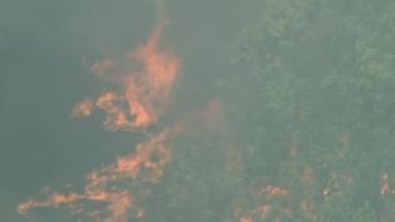 Пожари продължават да бушуват в Австралия