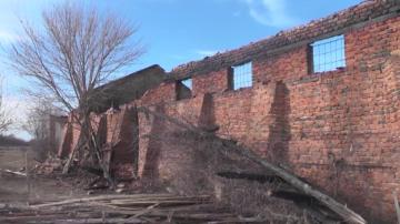Породисти коне изгоряха при палеж във Врачанско