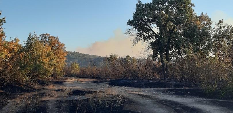 Голям пожар гори до хасковското село Брягово. Огънят се простира