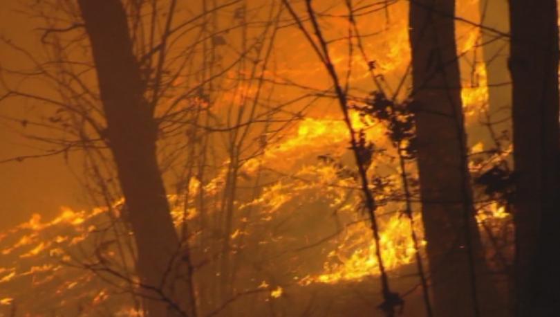Огромни пожари бушуват в Северна Италия край Торино и Генуа.