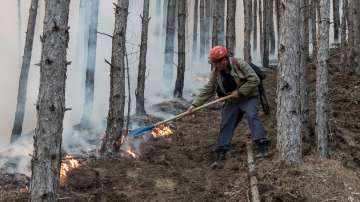 Продължава борбата с огнената стихия в Кресненското дефиле