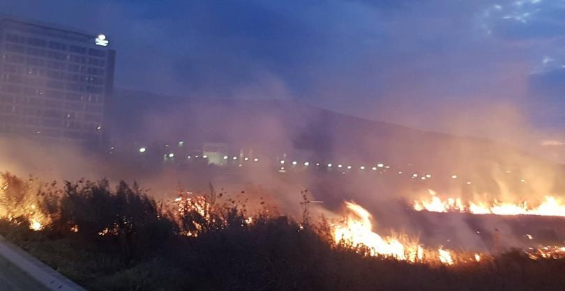 снимка 1 Пожарите до Летище София са потушени, няма замърсяване на въздуха