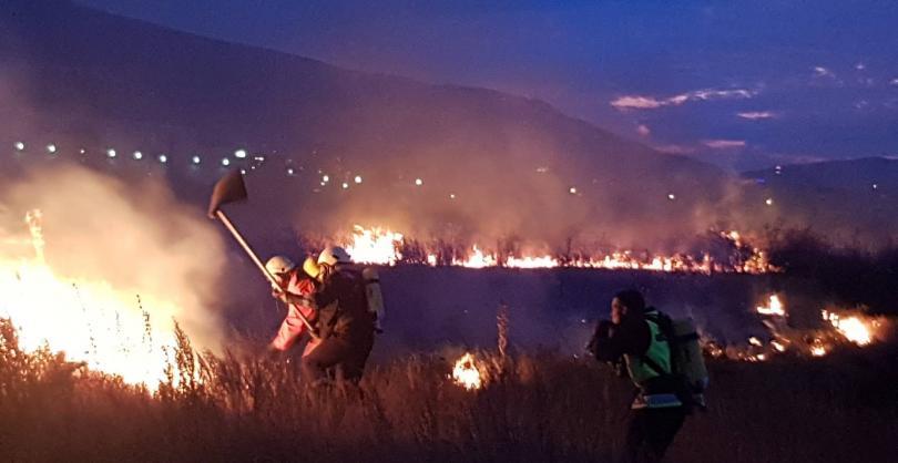 снимка 2 Пожарите до Летище София са потушени, няма замърсяване на въздуха