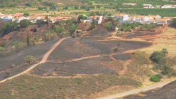 Продължава борбата с пожарите в Португалия