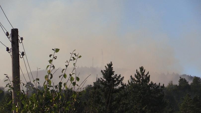 Между селата Владо Тричков и Реброво отново е избухнал горски