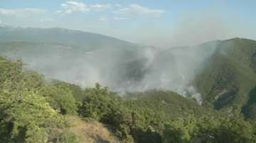 Овладян е пожарът край Стара Кресна