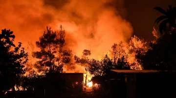 25 000 декара гори са изгорели в пожара на о-в Евбея