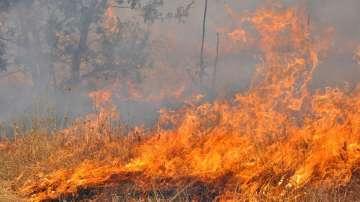 Пожарът в Харманлийско вече не застрашава населените места