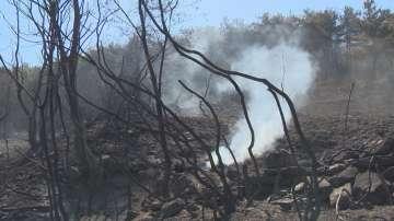 От нашия пратеник в Гърция: Още се борят с огъня в планинското селище Казавити