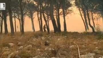 Мащабни горски пожари бушуват в Хърватия