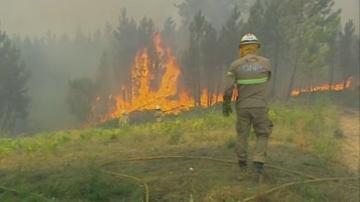 Девет ранени при планински пожари в Португалия