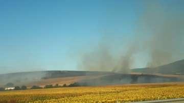 Паленето на стърнища е сред най-честити причини за пожарите в Благоеврадско