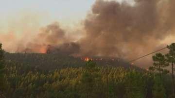 Продължават горските пожари във Франция и Португалия