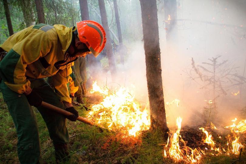 снимка 1 Продължават да горят пожарите в Сибир