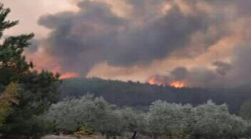 голям пожар бушува остров тасос