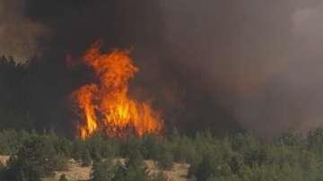 Евакуирани са хора заради пожара в района на Кресна