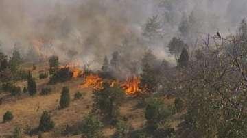 Трети ден гасят пожара в Кресненското дефиле