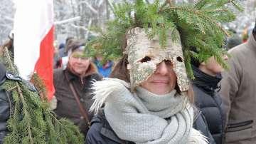 Природозащитници се преобразиха в дървета, за да ги защитят (СНИМКИ)