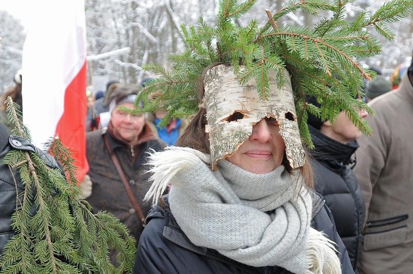 природозащитници преобразиха дървета защитят снимки
