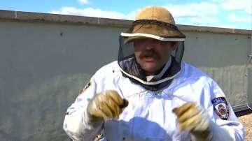 Зелена светлина: Полицаите, които спасяват... пчели