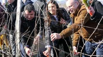 Румен Порожанов: Над 60 млн. литра е износът на вино от България