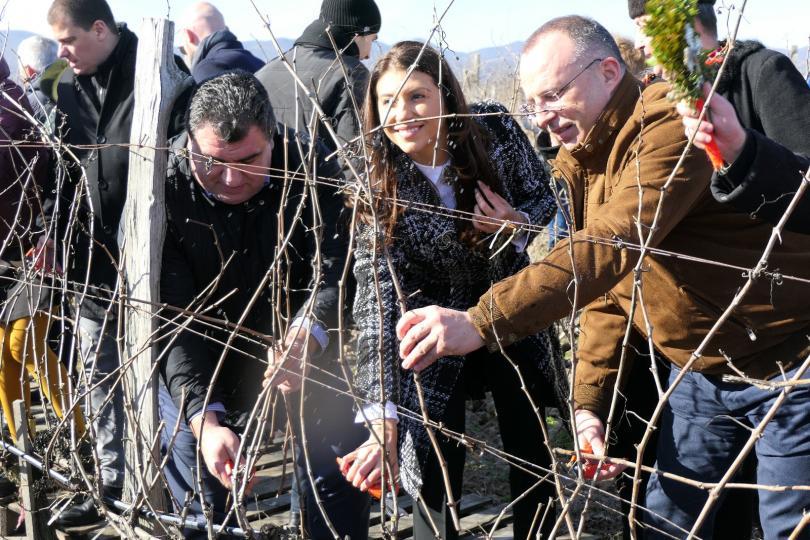 Над 60 млн. литра е износът на вино от България.