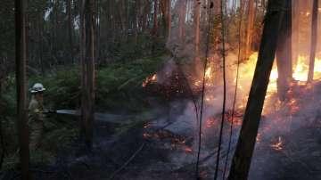 Португалия в тридневен национален траур за жертвите на горските пожари