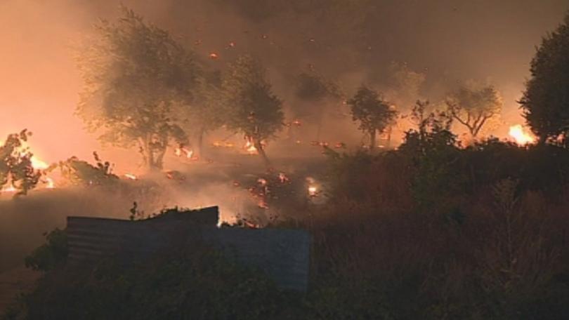 Пожарите в Португалия са опустошили 141 000 хектара растителност