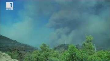 Голям горски пожар в Кипър. Островът чака помощ от ЕС и Израел