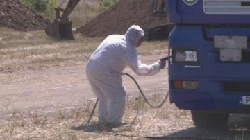 Започна дезинфекцията на големите свинекомплекси в Русенско