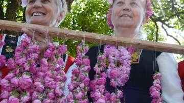 Закон ще гарантира качеството на българското розово масло
