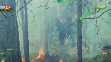 Събитията на 2019: Природните бедствия